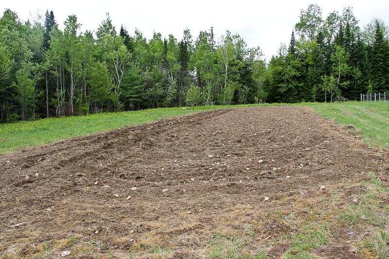 Freshluy plowed field