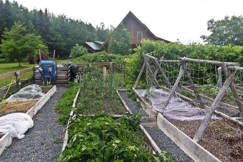 organic gardening netting