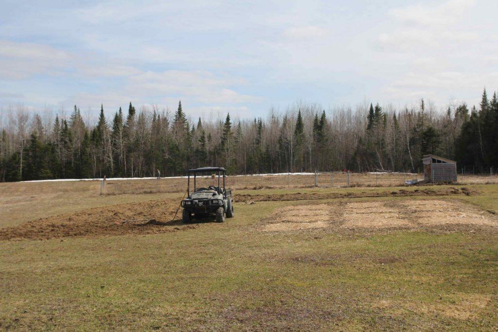 Homestead life: The farm fields