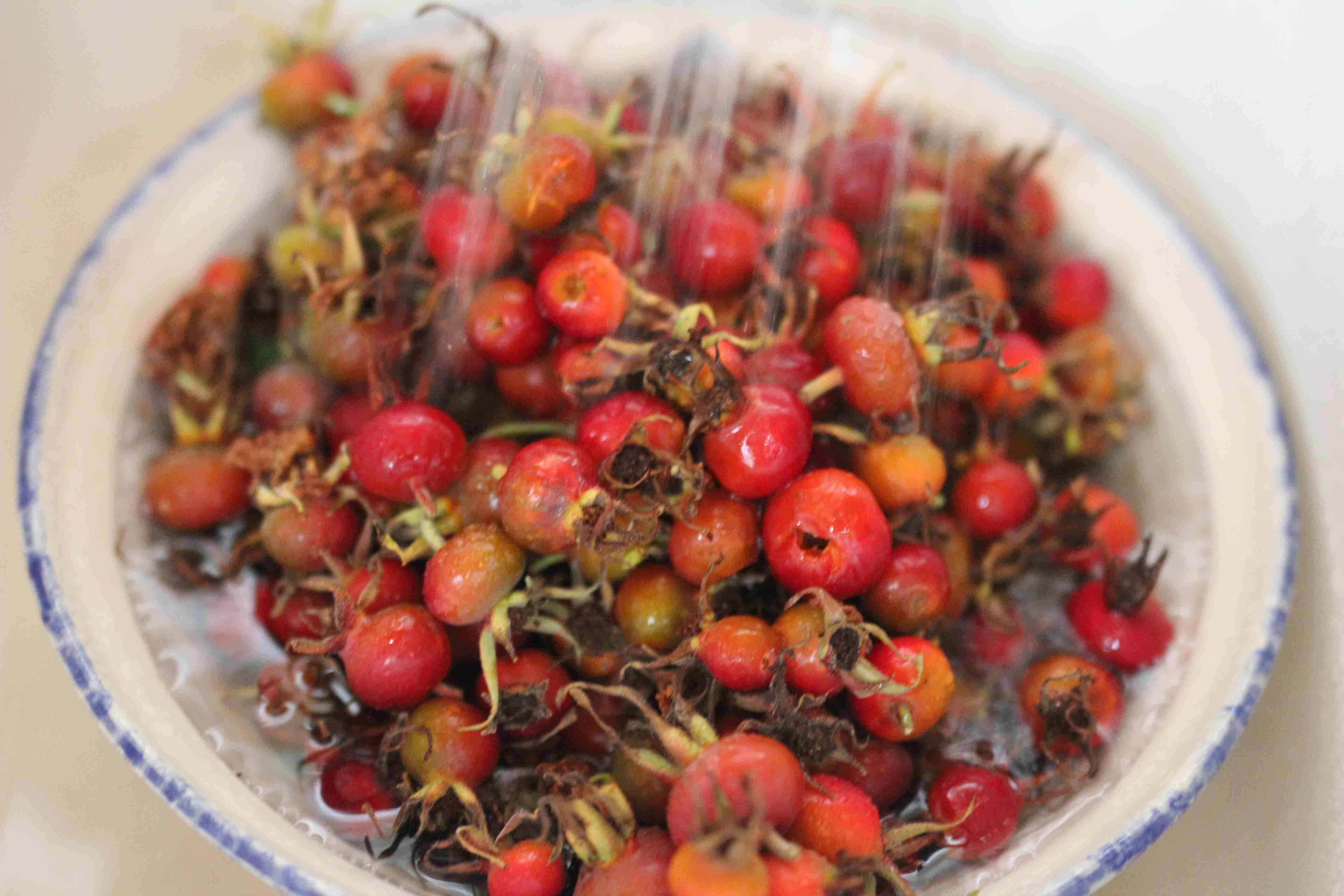 How To Make Rose Hip Wine (Recipe & Detailed Directions)